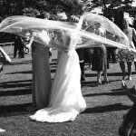 Wedding photographers in Devon